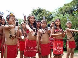 indios pemones vestimenta