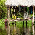 Waraos: Ubicación, lengua, vestimenta y vivienda