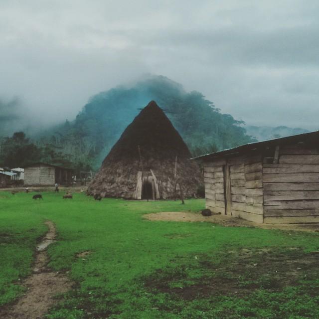 vivienda barí grupo indigena