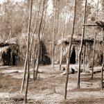 Chorotes: Pueblo Chorotís, o Lumnanas | Lengua, Vivienda, Cultura y Gastronomía