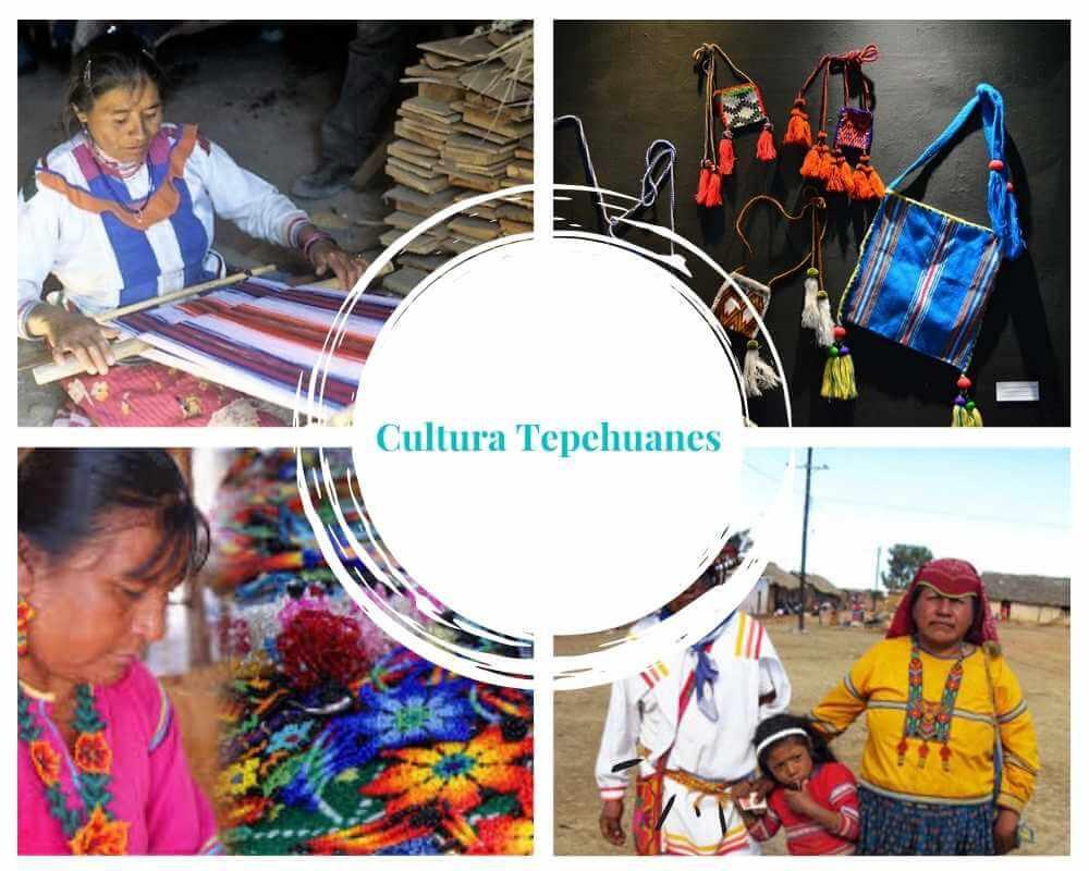 La cultura de los Tepehuanes del sur