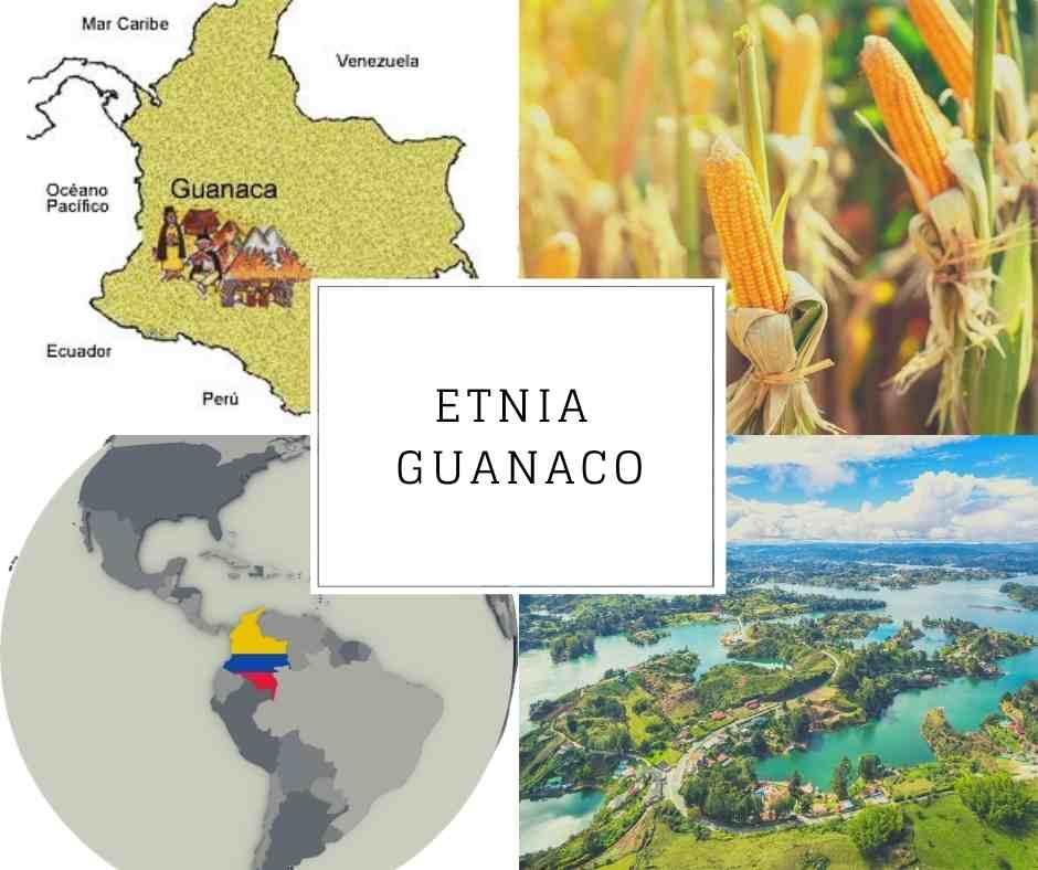 Etnia Guanaco