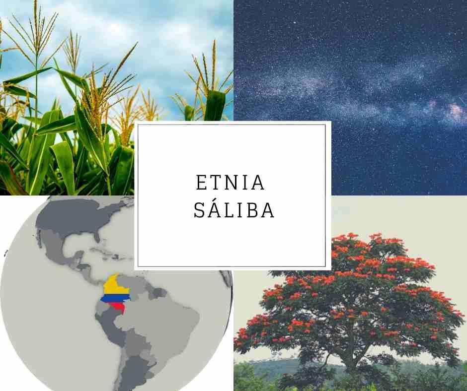 Etnia Sáliba