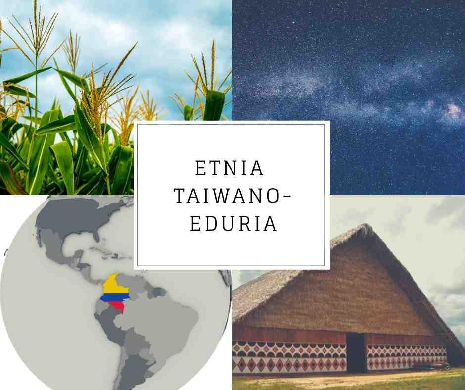 Etnia Taiwano-eduria