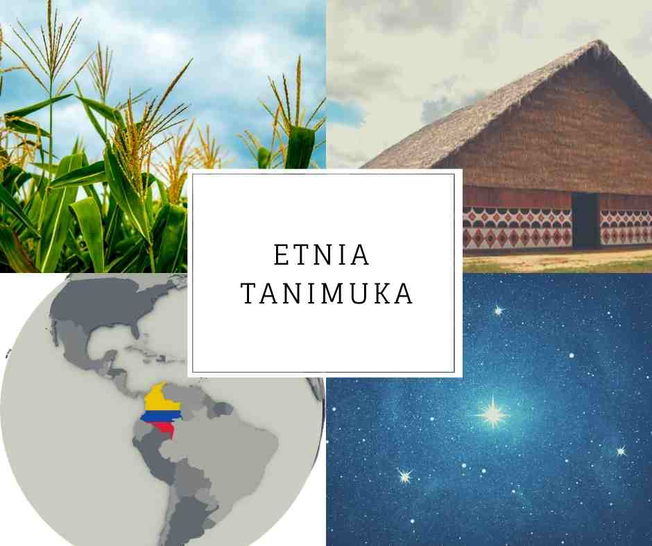 Etnia Tanimuka