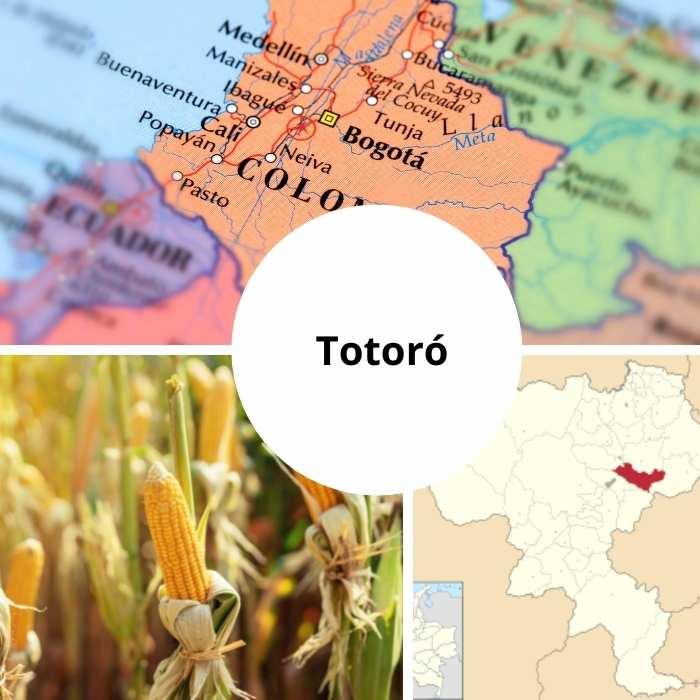 Totoró   Ubicación, Vestimenta, Vivienda, Alimentación y Lengua