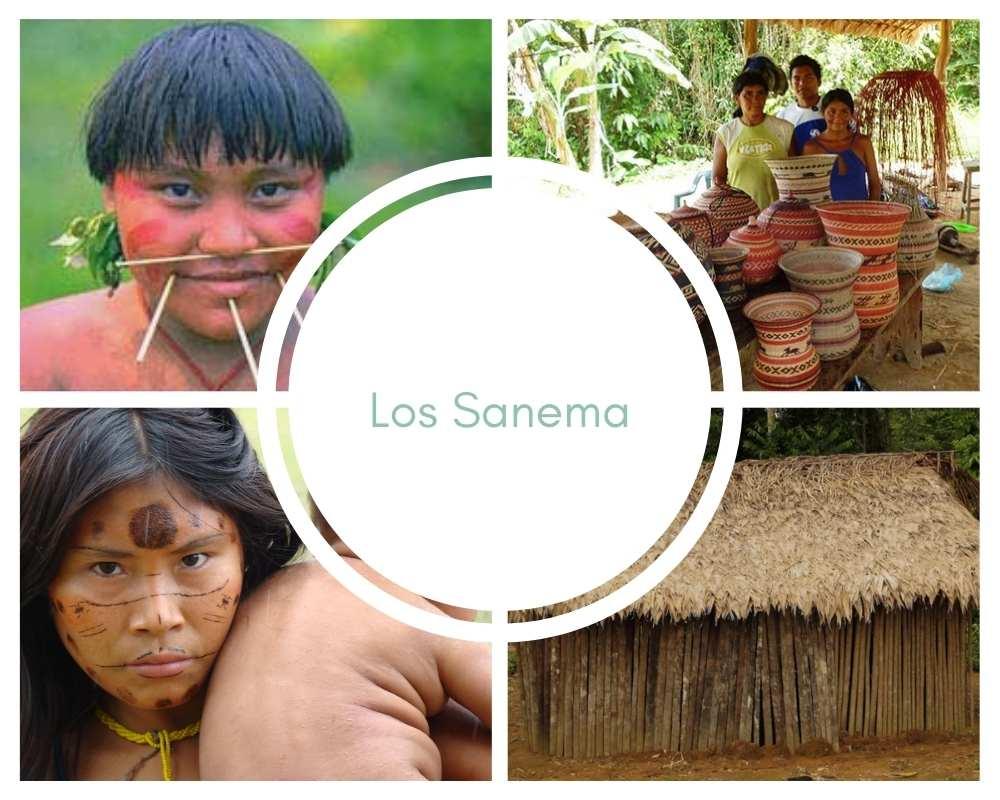 Sanema