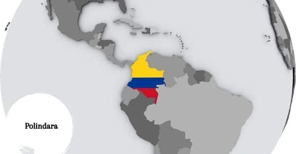 Polindara