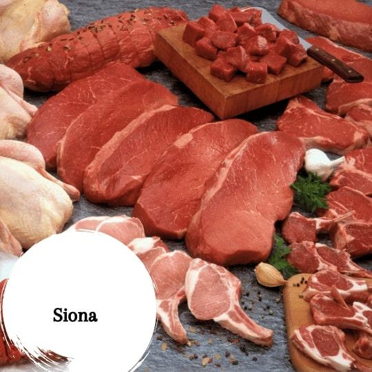 Siona Gastronomía