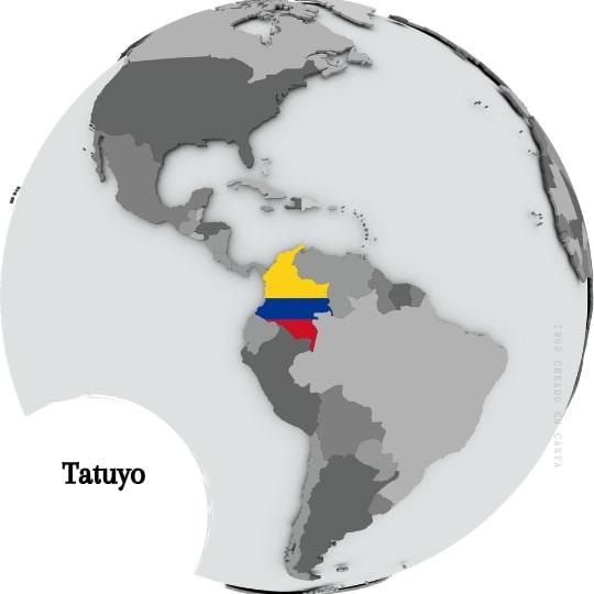 Tatuyo